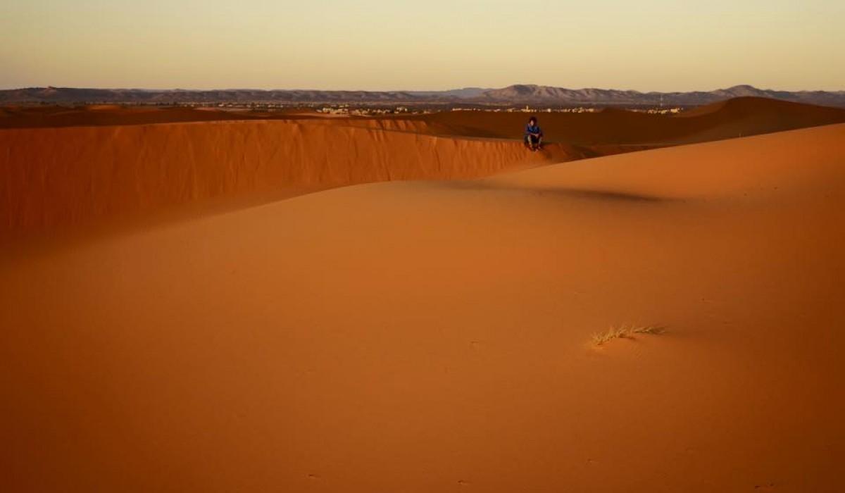 Solitary_Berber