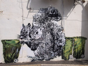 Squirrel Street Art tagged by the artist Dede