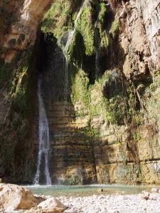 Davids Waterfall at En Gedi