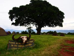Ngorongoro Crater Campsite