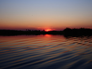 Sunset in the Delta