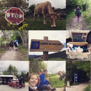 Camino Day 2