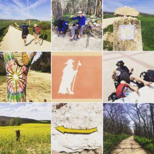 Camino Day 11