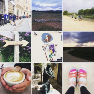 Camino Day 12