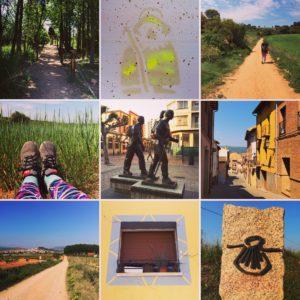 Camino Day 8