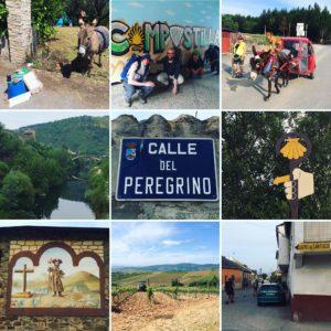 Camino Day 24