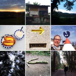 Camino Day 30