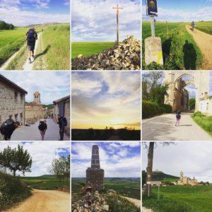 Camino Day 14