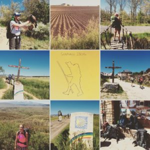 Camino Day 22