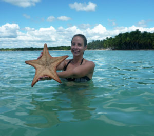 Sea stars in the Caribbean Sea