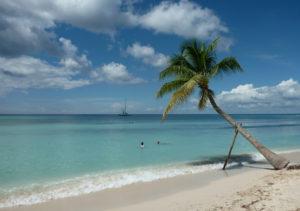 Isla Saona Main Beach