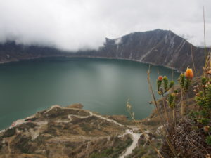 Quilotoa Crater Lake with a native Andean Flower in the foreground
